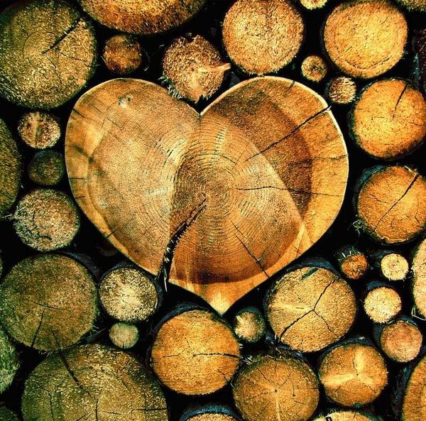 I benefici del legno in casa